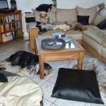 Claudias Wohnzimmer