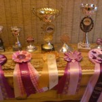 Ponty - Pokale